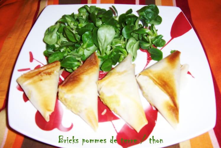 Samossas aux pommes de terre et au thon