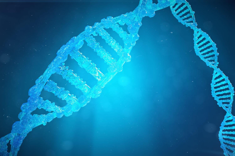 Allèle: définition, gène, récessif, dominant, rôle
