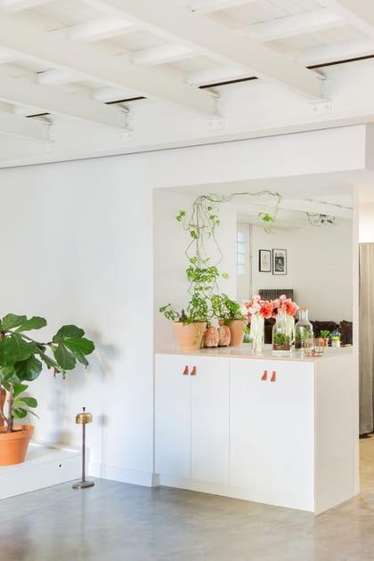 Des clips muraux pour plantes grimpantes