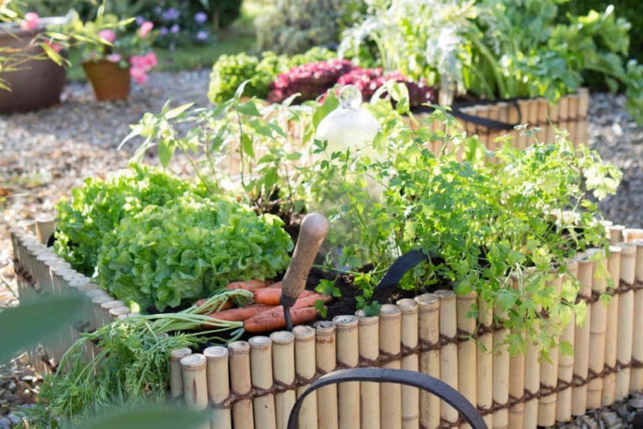 Comment s'occuper du jardin quand on a la flemme ?