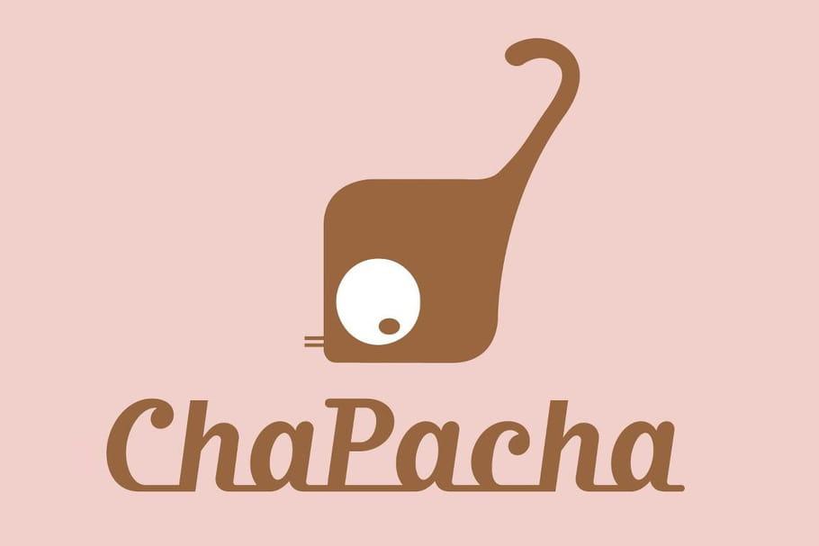 On a testé Chapacha, le service de gardiennage pour chats
