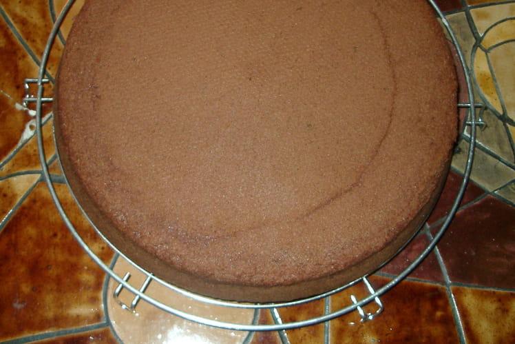 Gâteau au chocolat Nestlé