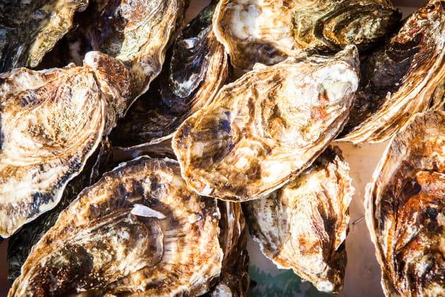 Une seule variété d'huîtrepour tout le bassin de Marennes