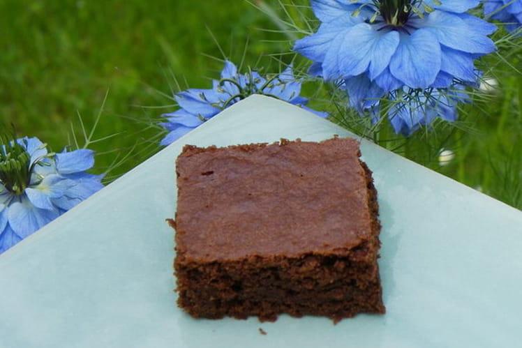Carrés au chocolat façon brownies
