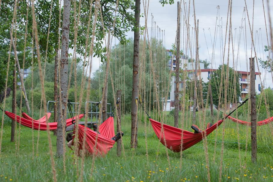 hortillonnages d 39 amiens place au festival art villes et paysage. Black Bedroom Furniture Sets. Home Design Ideas
