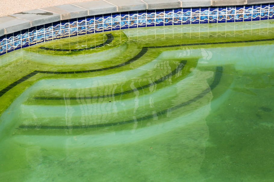 Eau de piscine trouble : conseils et solutions