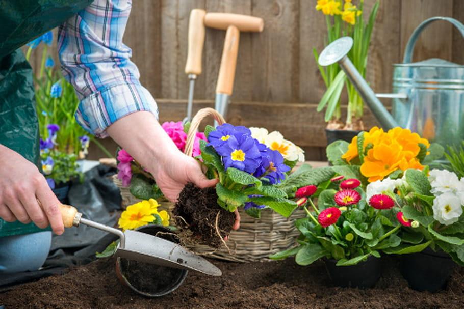 Pesticides jardin bio les habitudes des fran ais la loupe for Site de jardinage