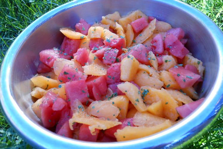 Salade de melon et pastèque