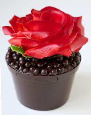 rose par jean-paul hévin