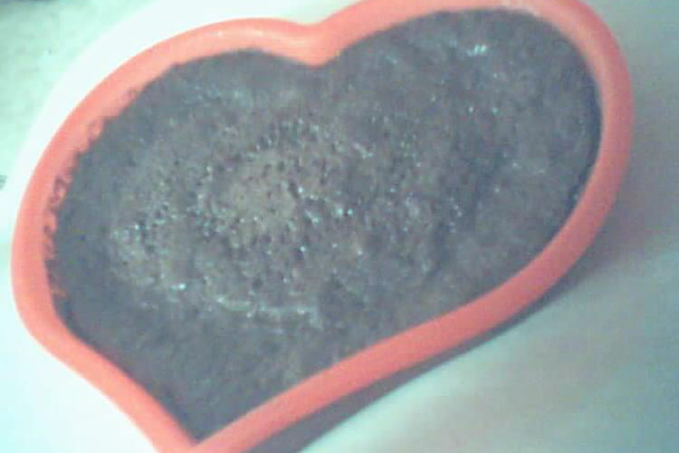 Gâteau au chocolat au micro-ondes simplissime