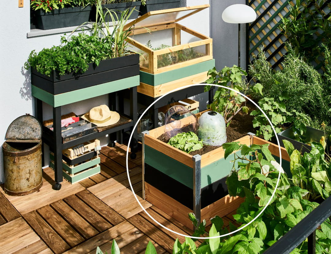 carre-potager-bas-balcon-vegetalise