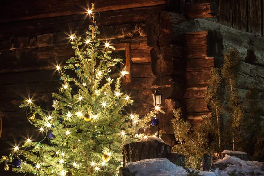 Acheter son sapin de Noël en ligne