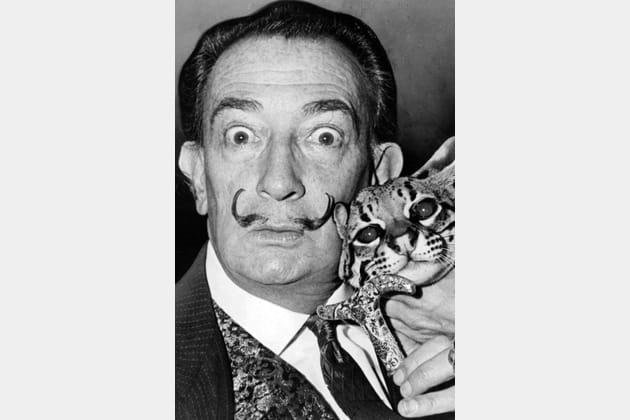 Salvador Dalí et son matou