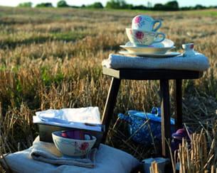 collection 'rose' de déjeuner sur l'herbe