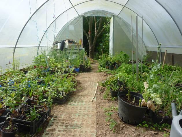 Un jardin une association for Association entretien jardin
