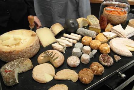 Fins fromages affinés