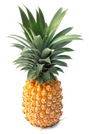 un ananas qui chante... ?
