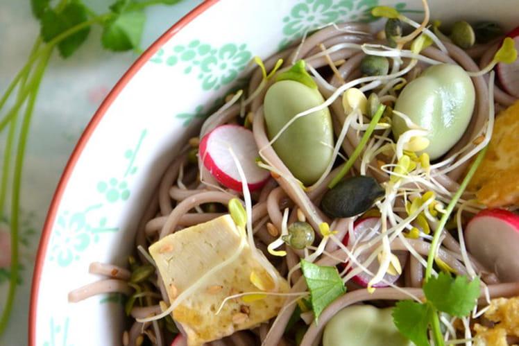 Salade printanière de nouilles soba aux graines germées, fèves et tofu sauté, sans gluten
