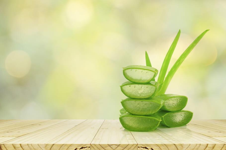 Aloe vera: comment se soigner avec, quelles contre-indications?