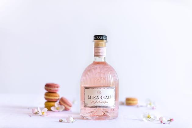 Le gin de Mirabeau
