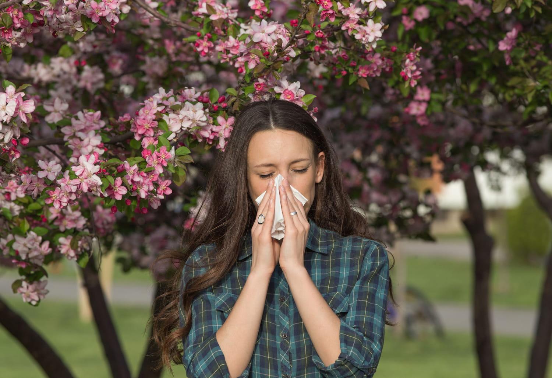 Antihistaminique naturel: les meilleurs, huile essentielle, ortie, thé vert..