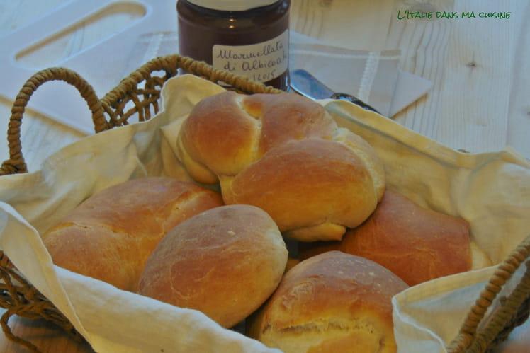 Pains à panini à l'huile d'olive, Panini all'olio