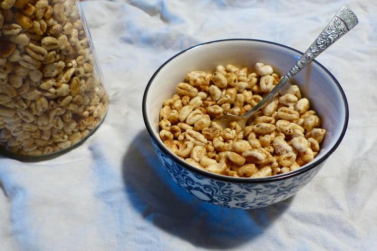 Céréales « Smacks © » maison