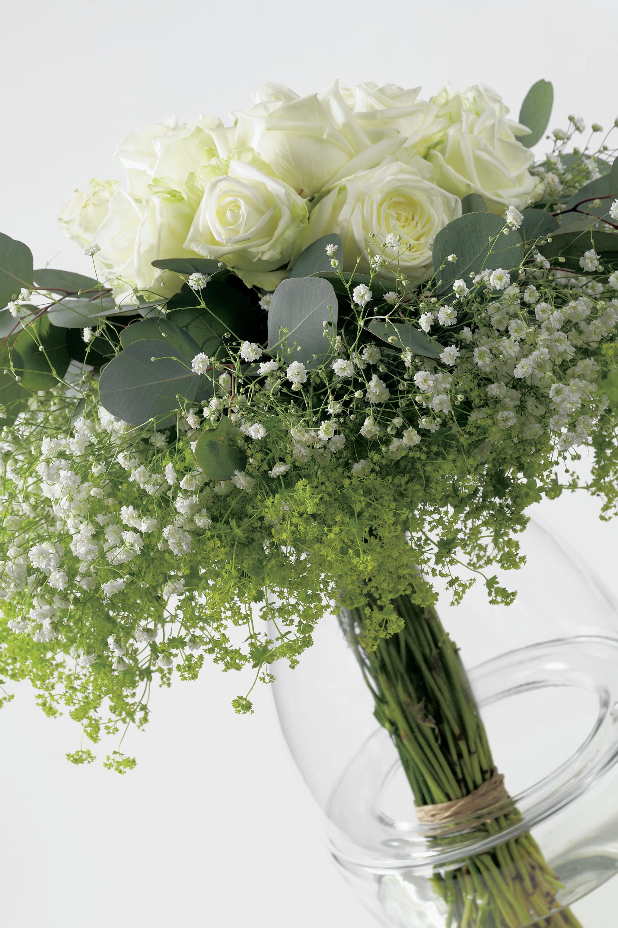Feuille D Eucalyptus Bouquet un bouquet frais aux feuilles d'eucalyptus