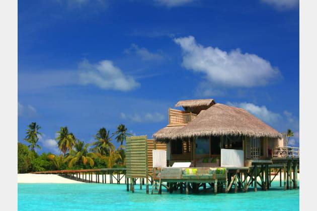 Maldives : lune de miel