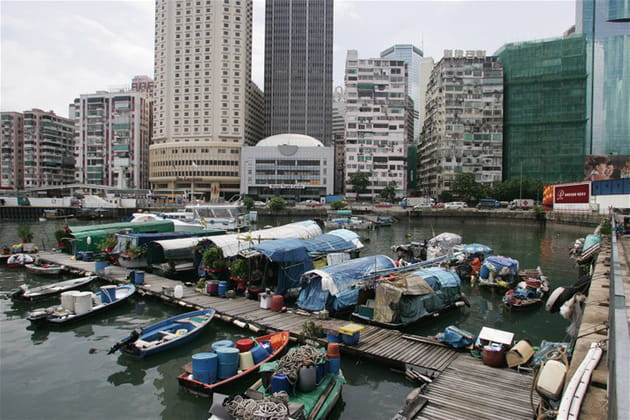 Typhoon Shelter