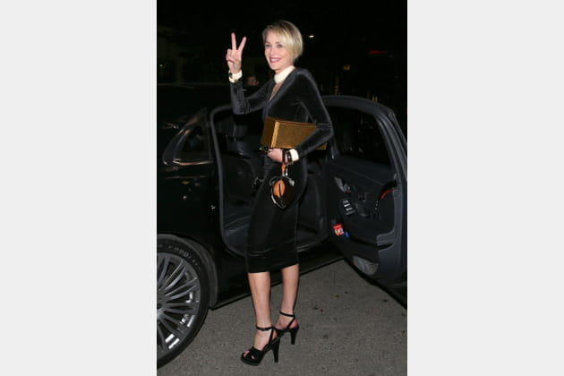 Sharon Stone fait patte de velours