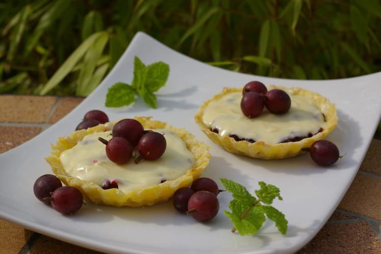 Tartelettes, compotée de groseilles à maquereau et mousse au chocolat