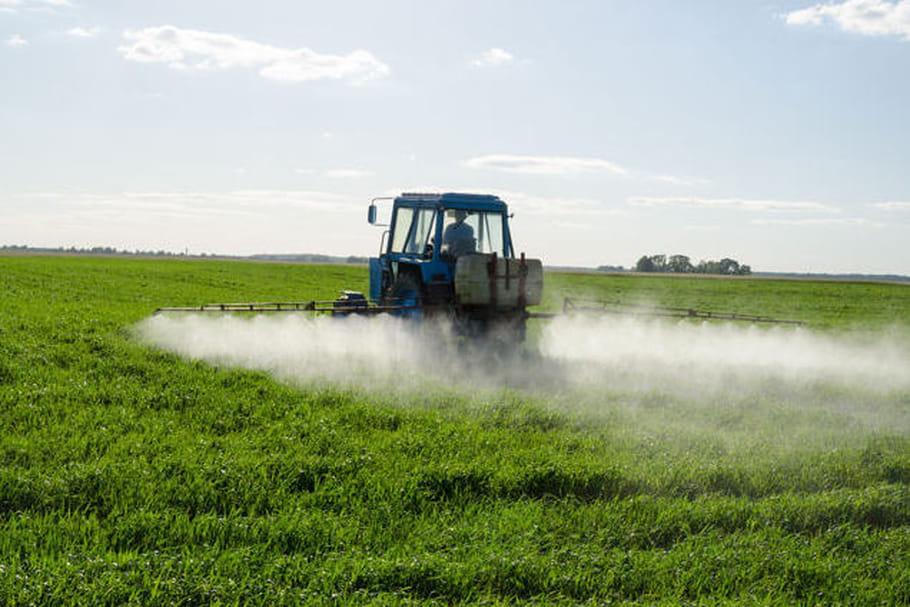Les pesticides diminueraient la qualité du sperme
