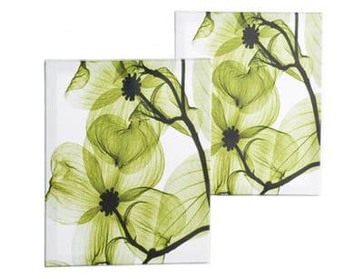 cadres 'fleurs vertes' de la redoute