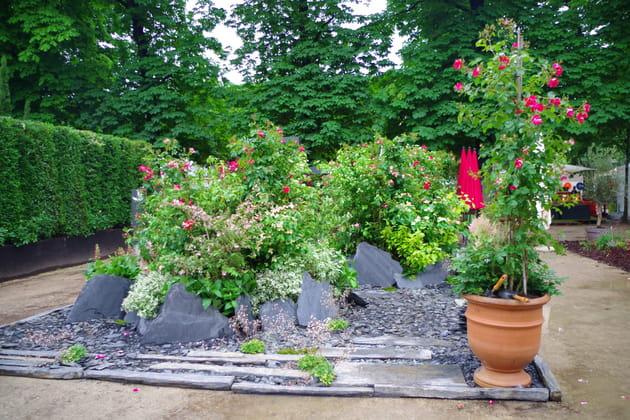 Un jardin rempli de roses