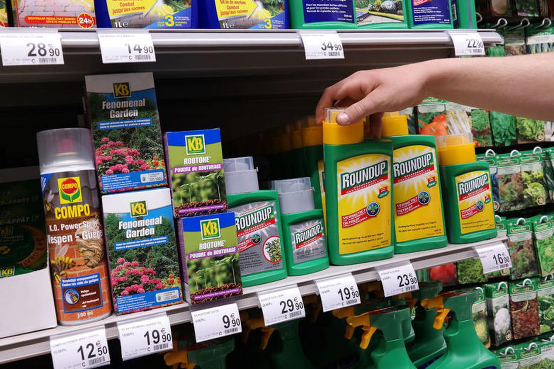 Glyphosate : la Commission européenne donne son feu vert à l'herbicide controversé