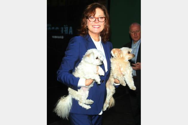 Susan Sarandon et ses deux chiens