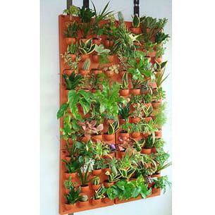 Un mur v g tal d 39 int rieur for Mur vegetal interieur maison