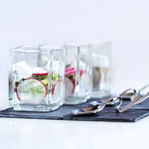 verrine fraîche concombre radis ricotta basilic