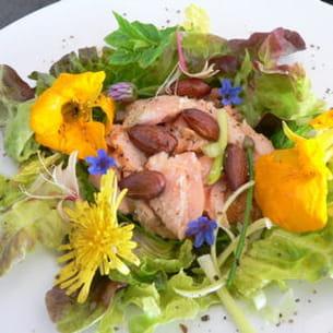 salade estivale au saumon