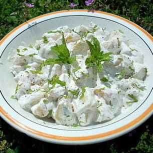 salade de pommes-de-terre à la menthe