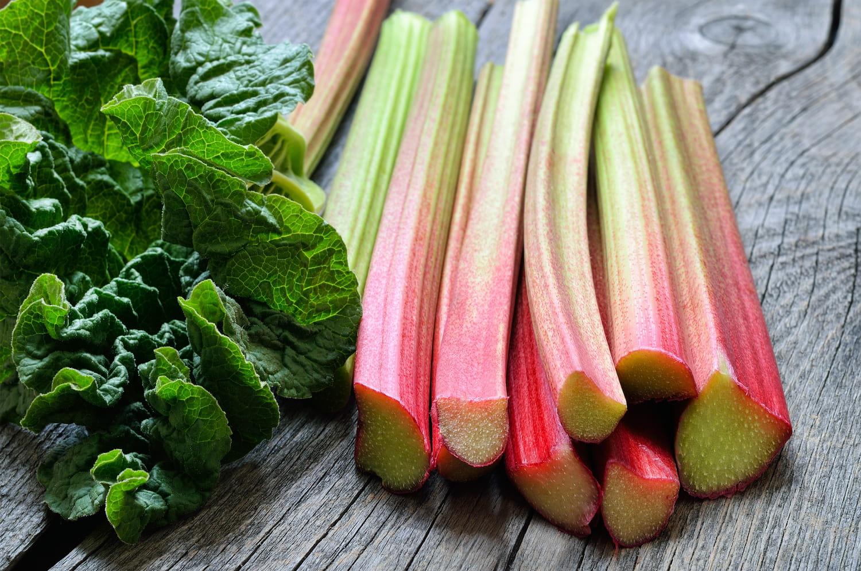 Rhubarbe: bienfaits santé et contre-indications
