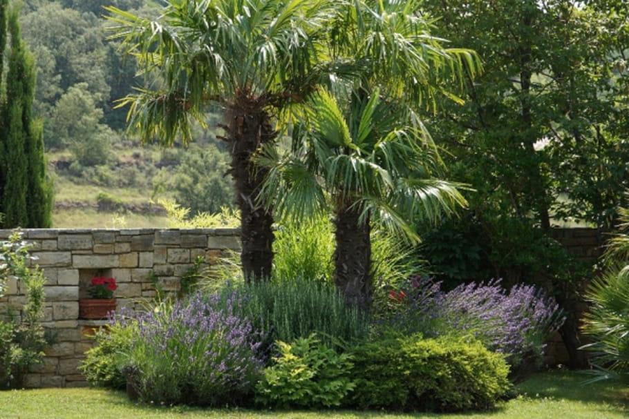 Aménager son jardin au printemps : le top 5 des conseils pro