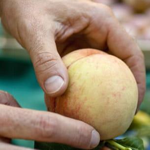 les fruits utilisés pour la confiture doivent être mûrs, mais pas trop.