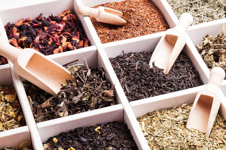 Thé noir, matcha, Rooibos, blanc, vert: bienfaits et différences