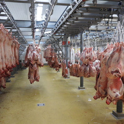 L'entrepôt de viande : 11 000 tonnes quotidiennes