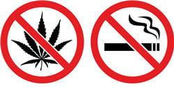 cannabis et tabac sont toxiques pour la santé.