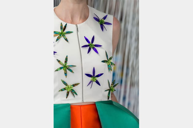 Delpozo (Close Up) - photo 33
