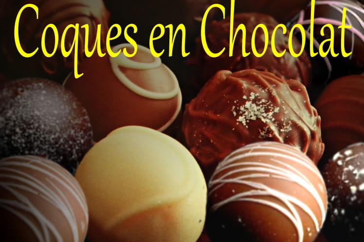 Coques en chocolat pour chardons