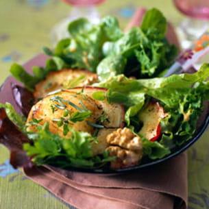 salade de chèvre chaud à la pomme